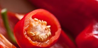 cayenne pepper helps with weight loss